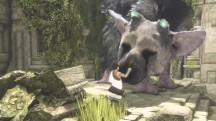 У The Last Guardian проблемы с производительностью на обычной PlayStation 4 и в разрешении 4K