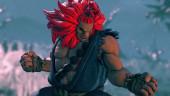 Capcom снова подтверждает, что у Street Fighter V не будет тьмы разных переизданий