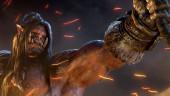 Blizzard всё-таки одолела читеров из Германии