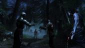 Новое дополнение для Two Worlds 2 выйдет в мае