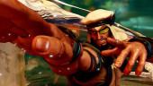 Capcom перестала продавать DLC для Street Fighter V из-за непреднамеренных отсылок к исламу