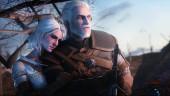Создатели The Witcher желают удачи проекту Netflix, но не имеют к нему никакого отношения, как и актёр Даг Кокл