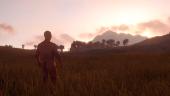Rust вернули в Steam почти 330000 раз, разработчики потеряли свыше 4000000 долларов