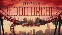 Операция «Кровавая орхидея» стартует во Rainbow Six Siege во конце августа