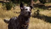 Встречаем колоритных напарников в новом трейлере Far Cry 5