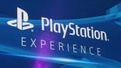 В этом году не будет PlayStation Experience, потому что Sony не сможет соответствовать хайпу