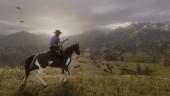 В России физические издания Red Dead Redemption 2 задержатся до 30 октября