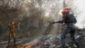 Bethesda опубликовала расписание «беты» Fallout 76