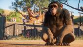 Осенью авторы симулятора зоопарка Planet Zoo проведут бета-тест для предзаказчиков
