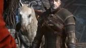 Весь контент The Witcher 3 фактически готов