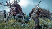 CD Projekt RED о ценностях The Witcher 3: Wild Hunt