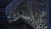 Скоро станет известна дата релиза Alien: Isolation