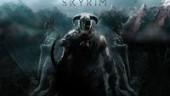 На PS3 Skyrim, возможно, останется без DLC