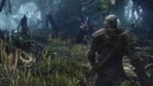 CD Projekt RED обещает больше не задерживать The Witcher 3
