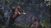 The Witcher 3 не станет защищаться от пиратов