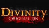 Кусочки геймплея Divinity: Original Sin