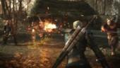The Witcher 3: Wild Hunt не выйдет в феврале
