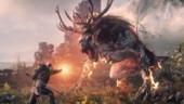 «1С-СофтКлаб» выведет The Witcher 3 на российские просторы