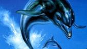 Создатель Ecco the Dolphin хочет возродить серию