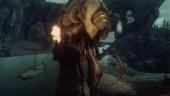 Видеотур по Морровинду на движке Skyrim