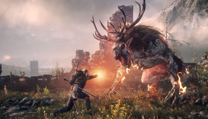 к игре Witcher 3: Wild Hunt, The