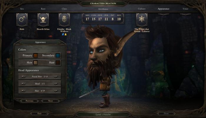 Скриншоты из игры Pillars of Eternity: The White March