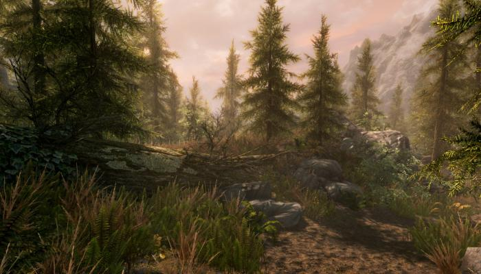 к игре Elder Scrolls V: Skyrim Special Edition, The