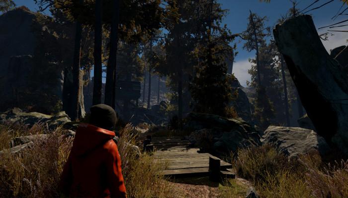 к игре Through the Woods