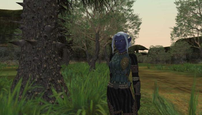 к игре EverQuest 2
