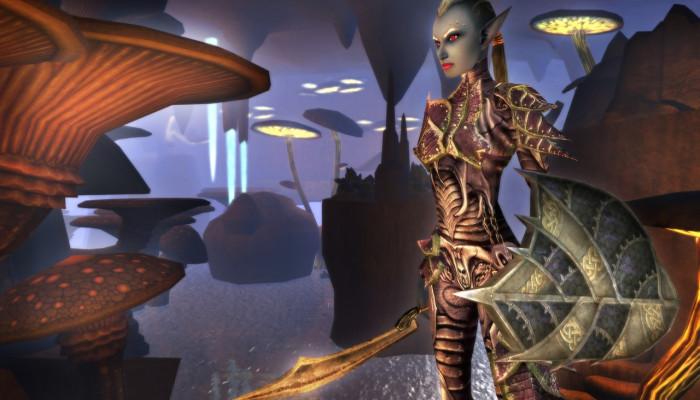 к игре Dungeons & Dragons Online