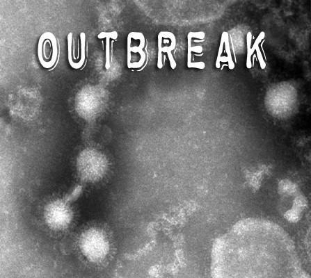 к игре Outbreak (2006)