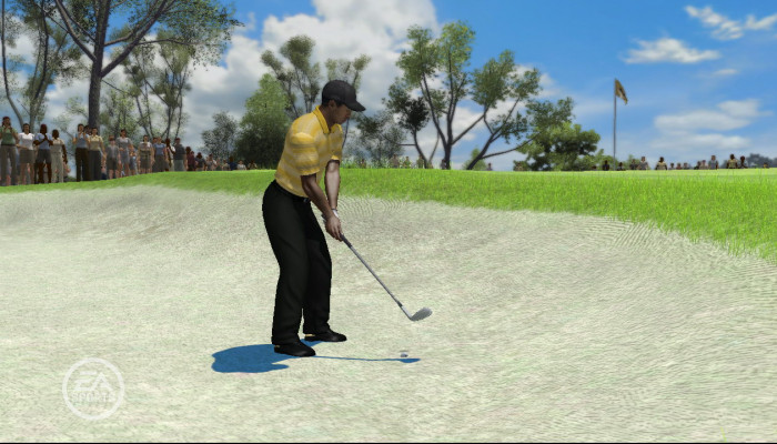 к игре Tiger Woods PGA Tour 08