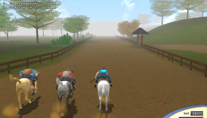 к игре Championship Horse Trainer