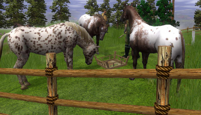 к игре Wildlife Park 2: Horses