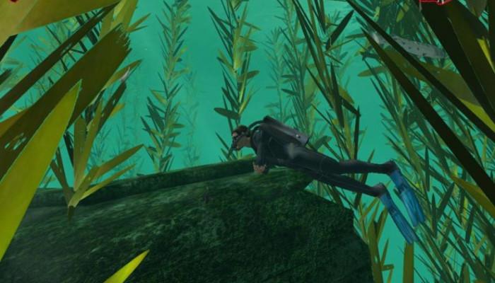 к игре Дайвер. Тайны подводного мира
