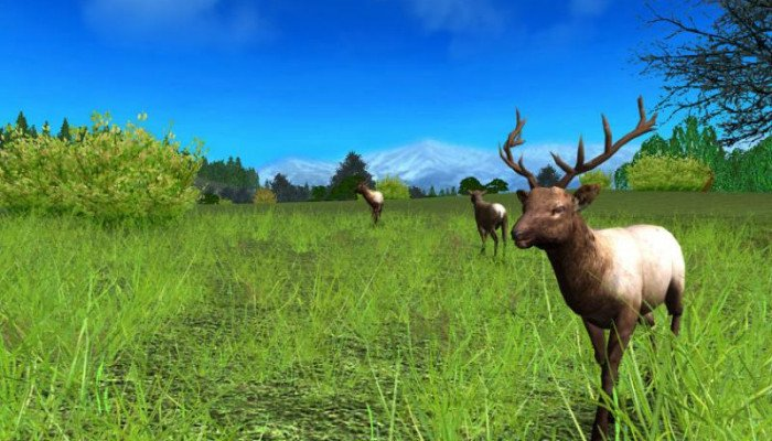 к игре Hunting Unlimited 2009