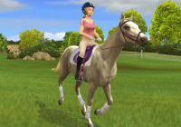 Screens Zimmer 7 angezeig: horse games for pc