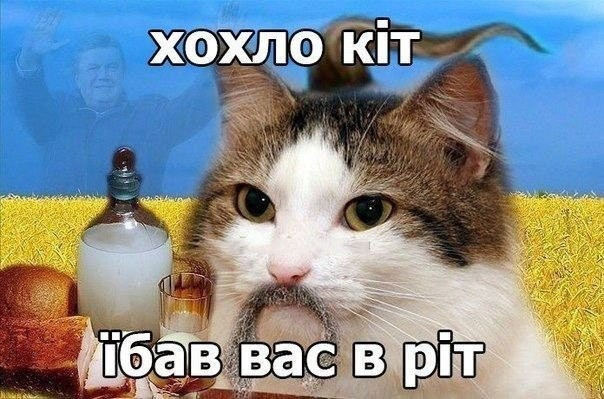 В Госдуме РФ утверждают, что ПАСЕ может отменить санкции - Цензор.НЕТ 980