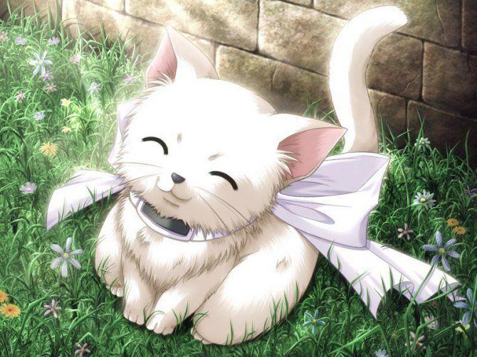 17 Февраль 2012. Милый аниме котёнок. animeshnitsa.