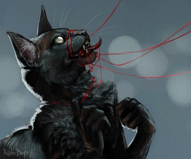 Картинки адского кота человека