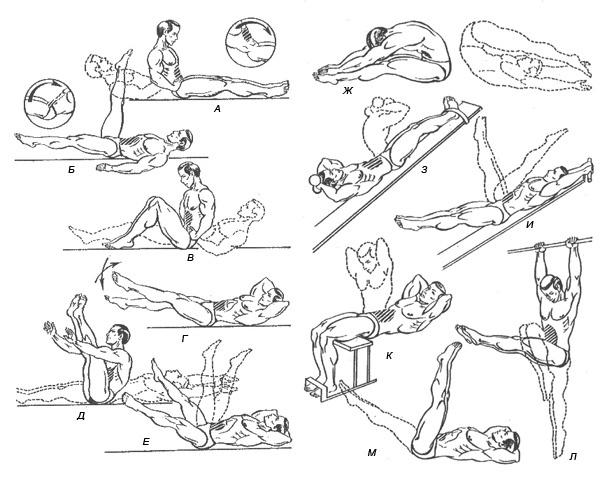 Упражнения для брюшного пресса в домашних условиях