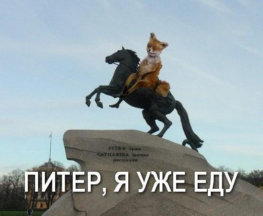 Памятник упоротому лису в Хабаровске. Куда мы катимся, или ЧТО ЗА ...