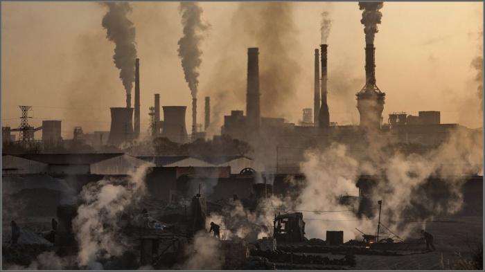 Проблемы экологии