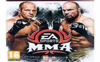 Считаете ли вы полным провалом UFC на PS4?