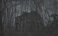 {ЗАПИСЬ}Кошмар в ночи- Blair Witch Volume 1: Rustin Parr 25.01.14 в 23.00