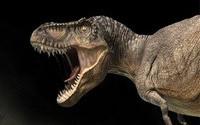 Иногда они возвращаются, или динозавры атакуют блоги.