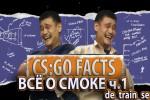 CS:GO Fact's: Обучающие видео по CS:GO. «de_train_se lesson one Wall of Smoke»