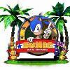 Мысли об игре «Sonic fan remix»