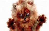 Жестокая реальность или почему не стоит бояться зомби. (Очевидность. Зомби. Мысли.)