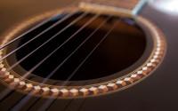 Новая гитара, новые струны, даже медиаторы новые! А Фен — прежний…